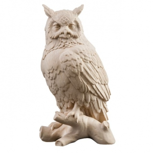 Owl on perch